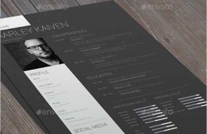 dark and white resume