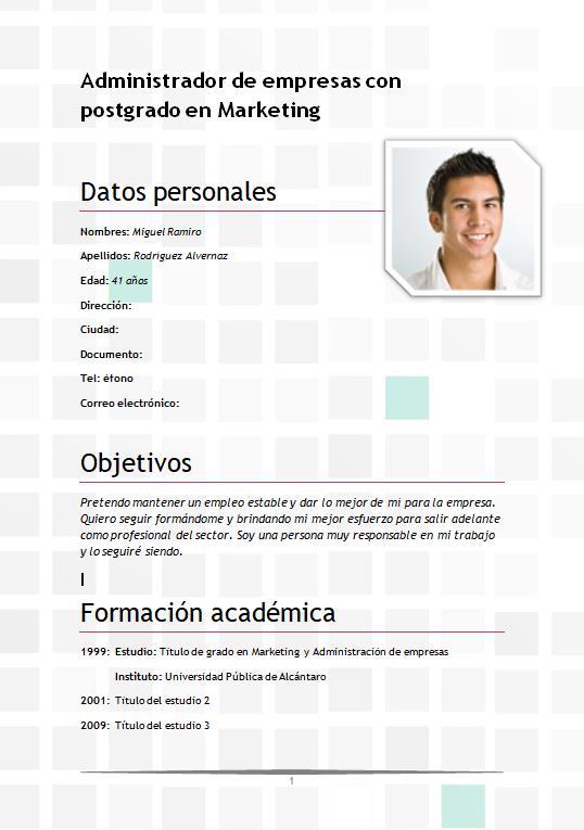 Diseño sutil y moderno - curriculumsvitae.net
